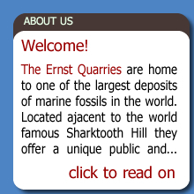 About The Ernst Quarries